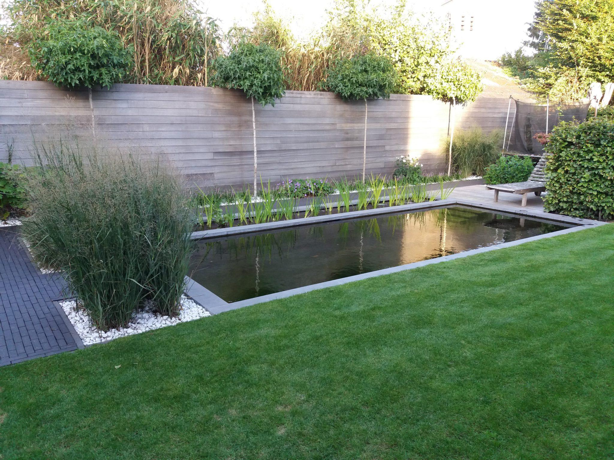 project 7 ook in de kleine tuin past een zwemvijver 3