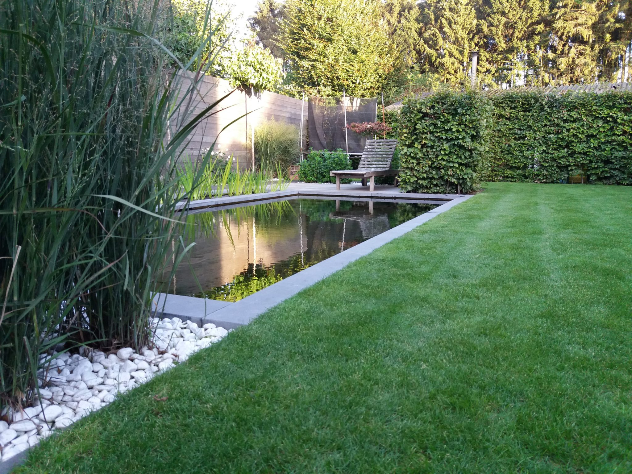 project 7 ook in de kleine tuin past een zwemvijver 6